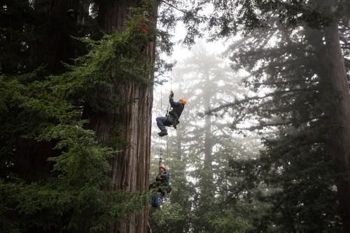 misty climbing