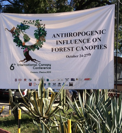 2012 Canopy Conference in Mexico