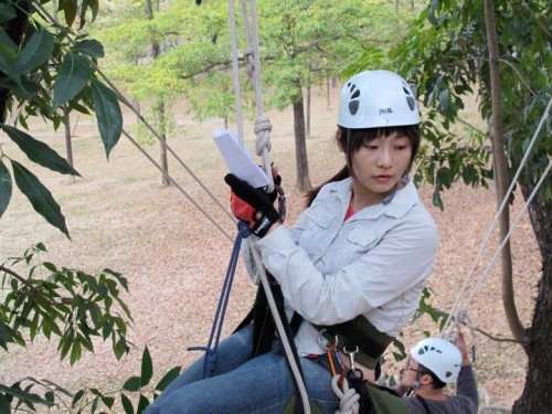 tree climbing note taking - Taiwan