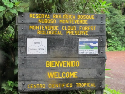 Welcome to Monteverde research center