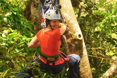 canopy researcher